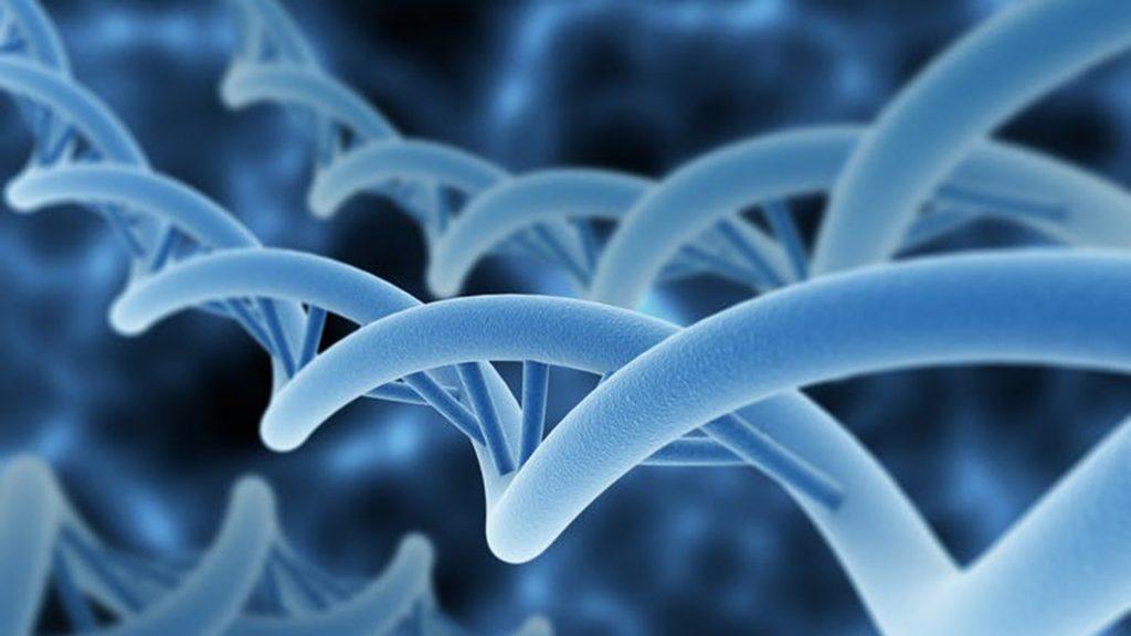 DNA-inspired
