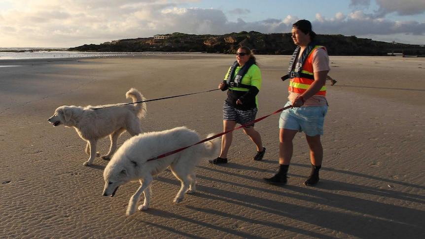 Maremma guida con pullman a piedi lungo la spiaggia verso l'isola centrale
